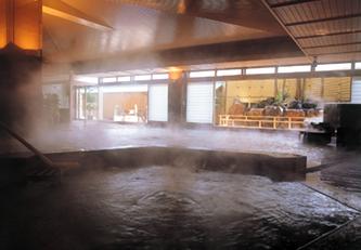 Japan ryokan association onsen hot springs - Ryokan tokyo with private bathroom ...